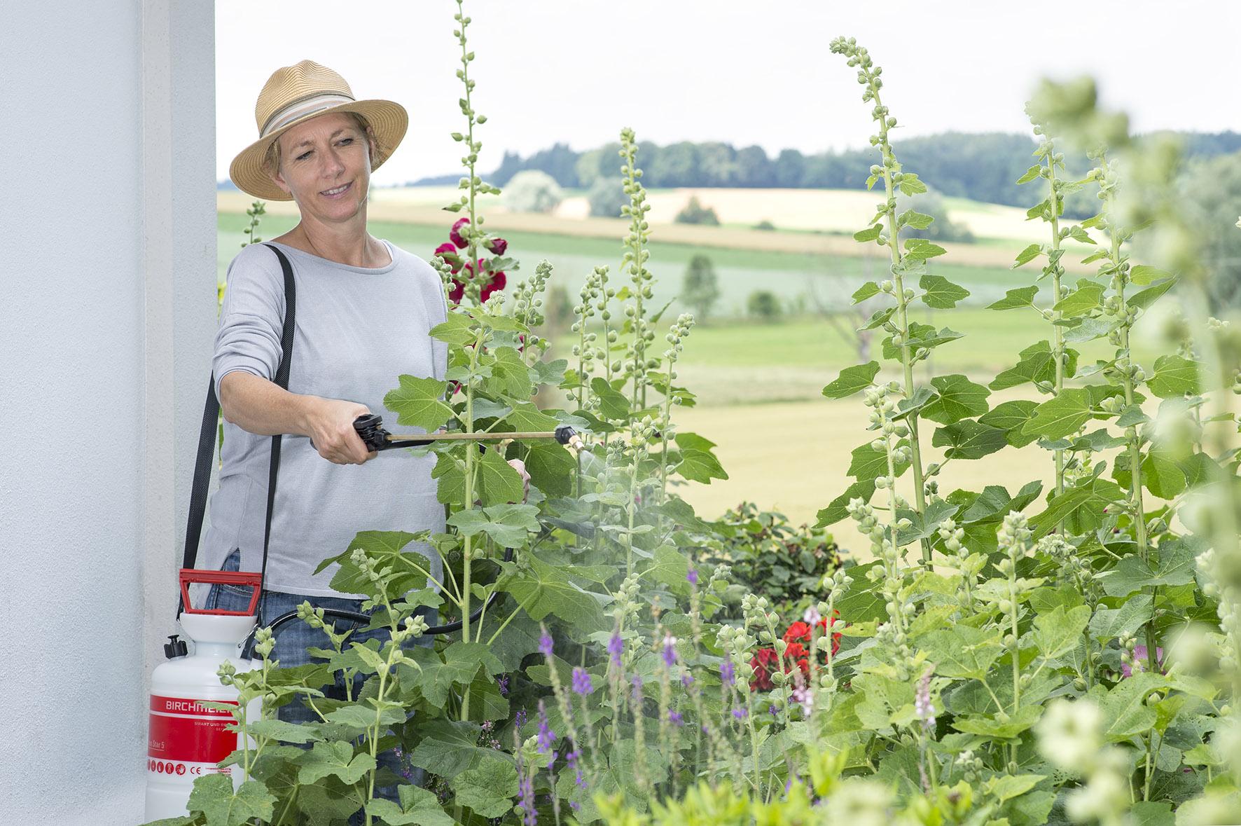 High Quality ... 5 Liter Sprühgerät Garden Star 5 Von Birchmeier Zum Besprühen Von  Balkonpflanzen, Kübelpflanzen